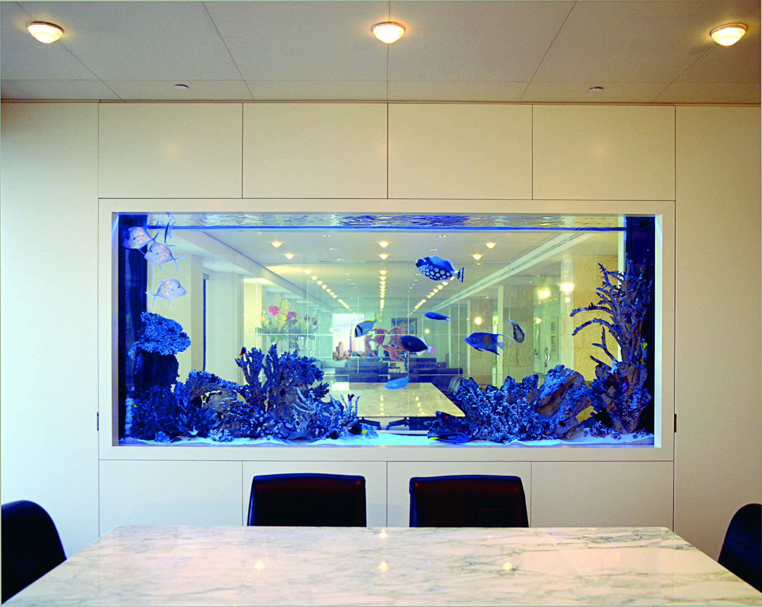 This 1,000 –gallon saltwater aquarium divides two conference rooms on the 49th floor of a Manhattan office building.