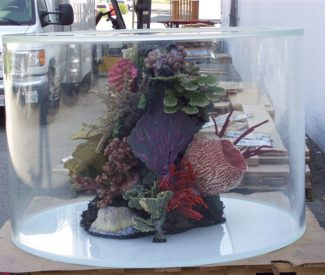 cylinder-reef