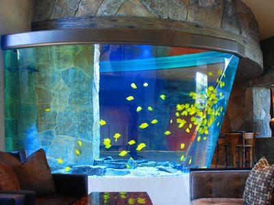 huge-aquarium