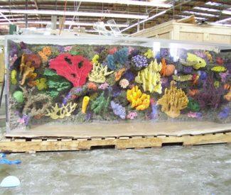 spotswood-aquarium-003
